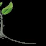 Pattern Exploration Text Logo